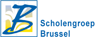 Brusselse scholengroep